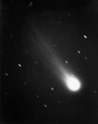 photo of halley's comet taken in 1986