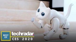 Elephant Robotics MarsCat