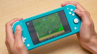The best Nintendo Switch Lite accessories