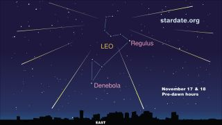 This sky map shows where to look to see the Leonid meteor shower of 2010 on Nov. 17-18.