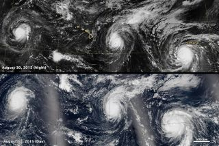 Three Category-4 storms (Kilo, Ignacio, and Jimena) are swirling in the Pacific Ocean, the first time this has happened in recorded history.