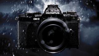 Crazy-but-true Olympus sensor captures details between the