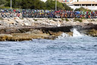 The 2020 Mallorca Challenge