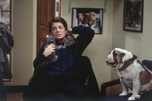 Michael J Fox in Family Ties