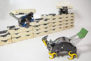 Termite-Inspired TERMES Robots