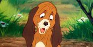 The 10 Best Dog Movies On Disney+