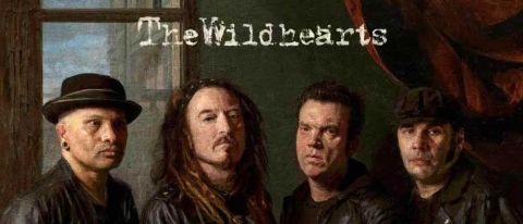 The Wildhearts - Renaissance Men