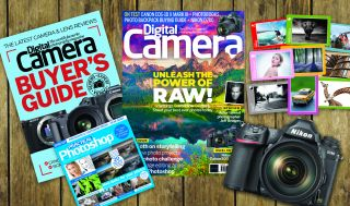 DCam 227 new issue listing image