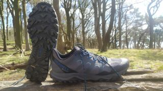 The Merrell Fiery GTX on a tree