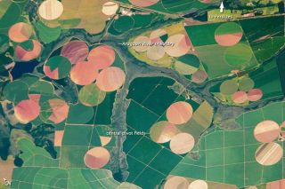 agricultural-fields-110222-02