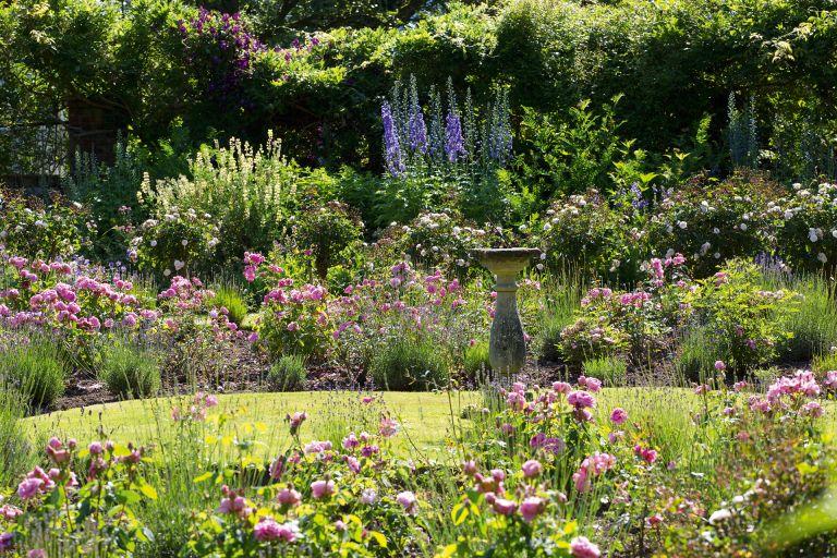 27 Cottage Garden Ideas Inspiration, How To Plan A Cottage Garden