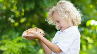 Small pets for kids