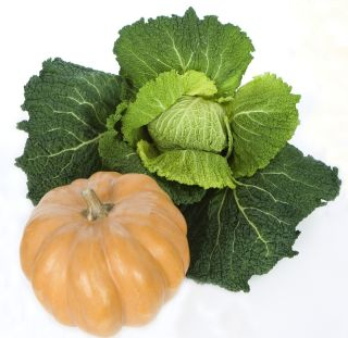 A pumpkin and a head of kale