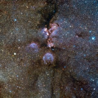 Cosmic Cat's Paw Dazzles in New Photo