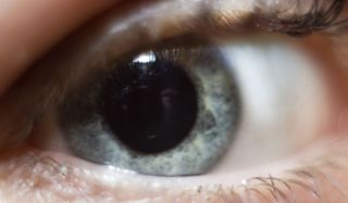 eye-closeup-101012-02