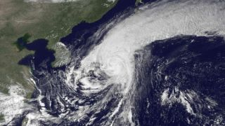 typhoon roke landfall