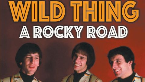 Cover art for Wild Thing: A Rocky Road by Pete Staples