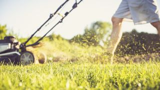 When is the best time to buy a lawn mower?