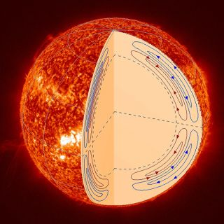 The Sun's Meridional Circulation