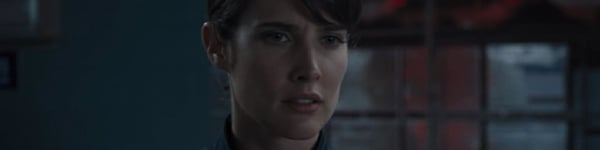 Avengers Maria Hill