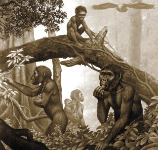 Artwork of a family of Australopithecus africanus hominins in a forest.