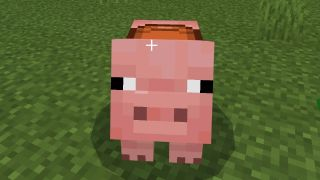 how to tame minecraft pig