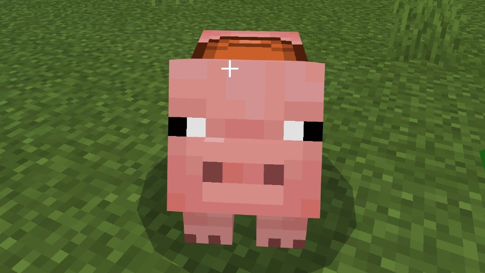 How to tame a pig in Minecraft