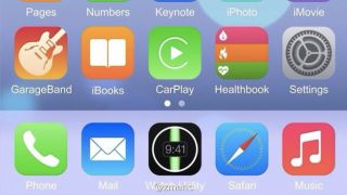 Does this purported iOS 8 screenshot out the iWatch? Or is it a fake?