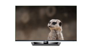 Meerkats to go Ultra HD in BBC's first 4K broadcast