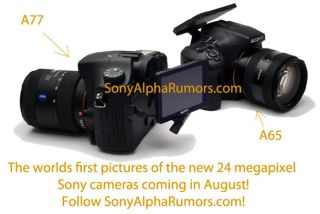 Sony A77 Sony A65 slated for release