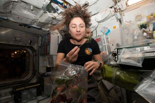 Astronaut Jessica Meir enjoys some freshly harvested mizuna mustard greens on the International Space Station on Oct. 30, 2019.