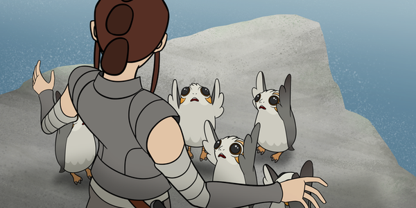 star wars forces of destiny rey porgs