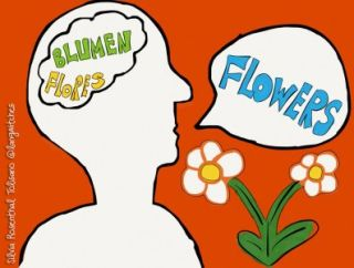 Literacy: Language Competence Beyond Our Comfort Zone