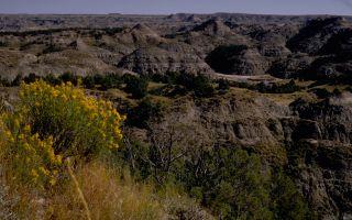 Theodore Roosevelt National Park national park service