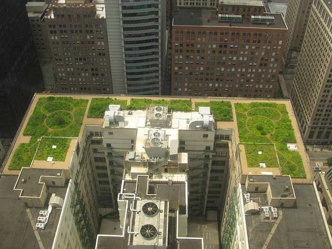 Green Roofs Curb Global Warming Study Finds Live Science