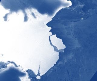 A giant iceberg has calved off the front of the Amery Ice Shelf in East Antarctica.