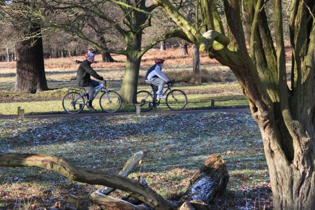 Cyclists in Richmond Park - photo by Tejvan Pettinger