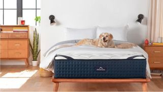 Three reasons why you'll love the new DreamCloud luxury mattress