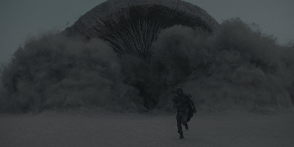Sandworm in Dune