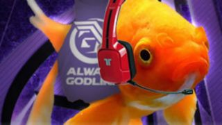 Goldfish have better attention spans than you with that smartphone of yours