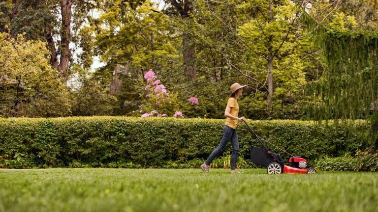 Get a jump on spring yard work and stay busy while social distancing with these lawn mower deals