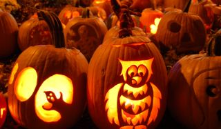 pumpkins-carved-101029-02