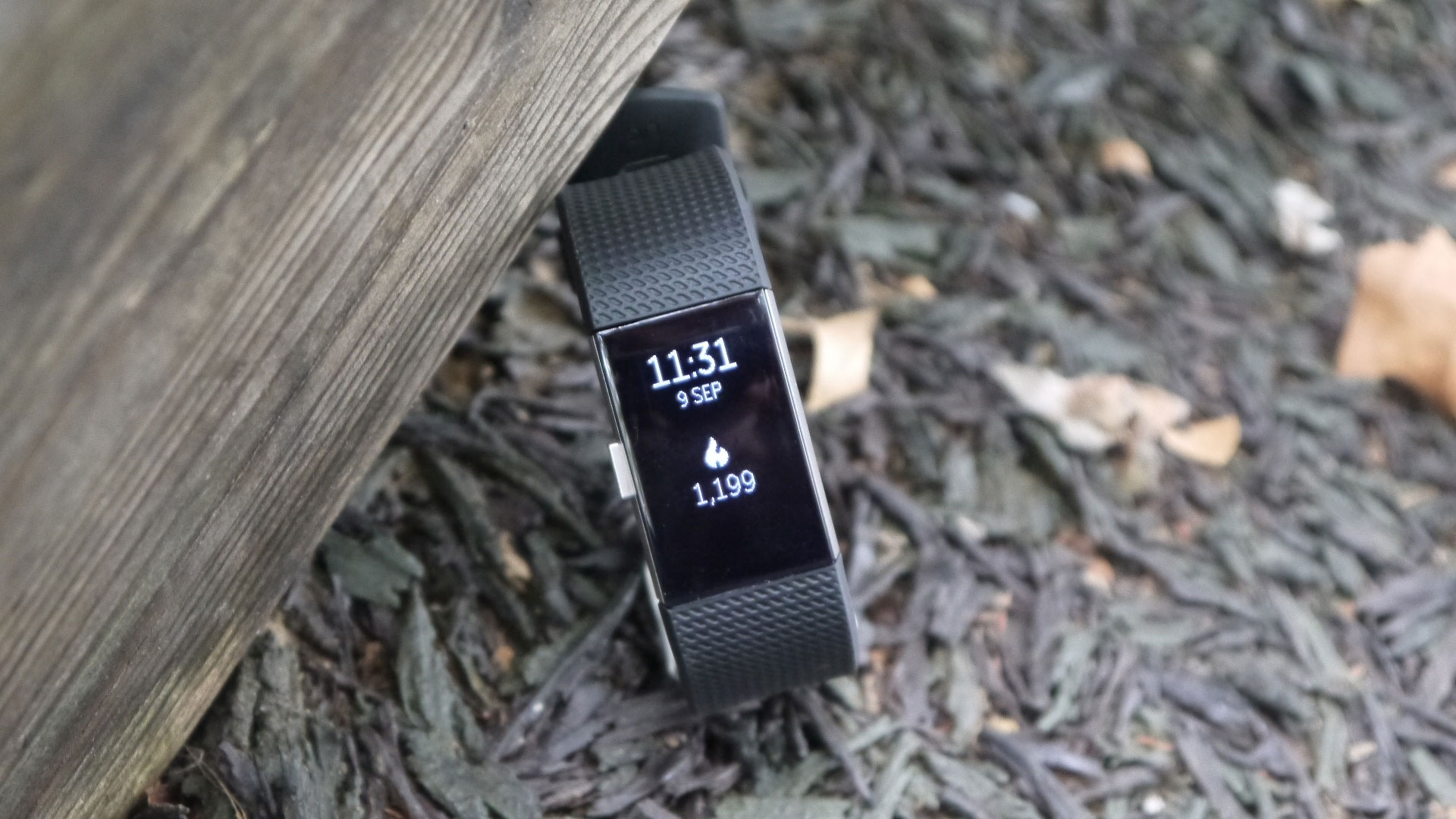 Fitbit Charge 2 review: Page 3 | TechRadar