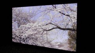 Hands on: Panasonic 145 inch 8K Super Hi Vision television