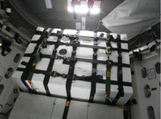 Saffire-1 Experiment Inside Cygnus