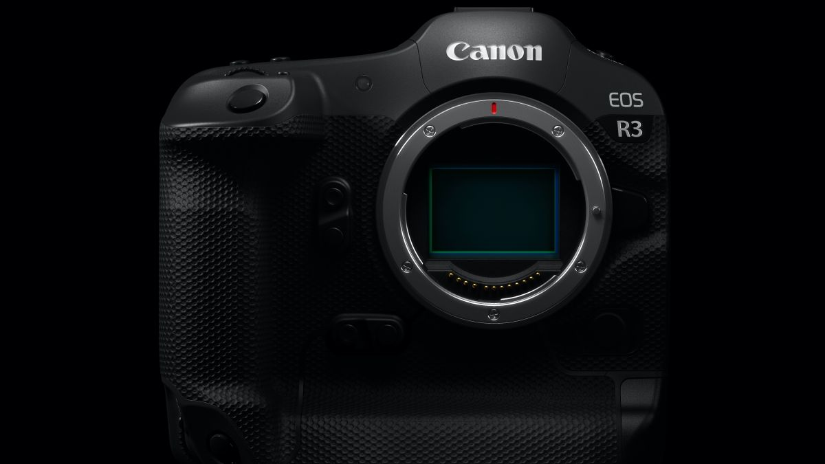 First Canon EOS R3 Olympics photos appear to reveal its resolution