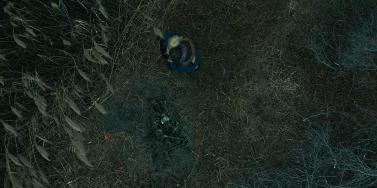 Shannan's remains
