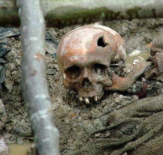 Serbian troops killed 8,000 Muslim men and boys at Srebrenica in 1995.