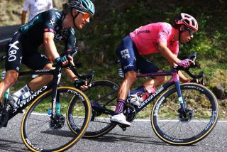 Wilco Kelderman (Bora-Hansgrohe) rides alongside Rigoberto Uran on stage 15 of the Tour de France