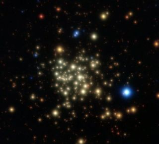 Crowd of Stars Surprisingly Normal